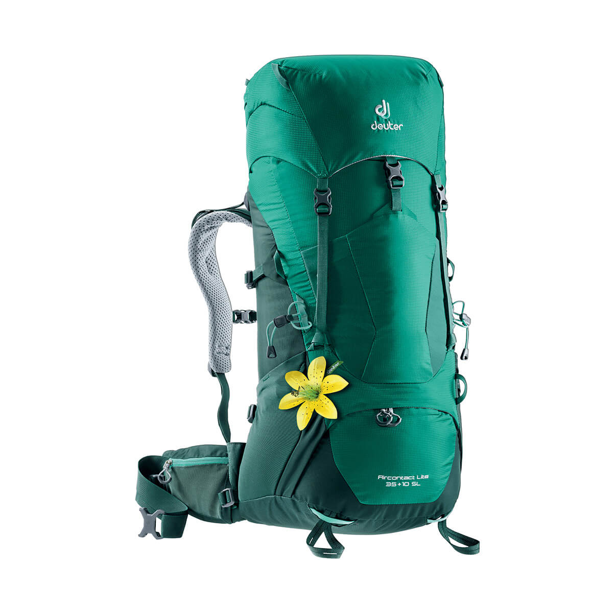 Aircontact Lite 35+10 SL alpinegreen-forest